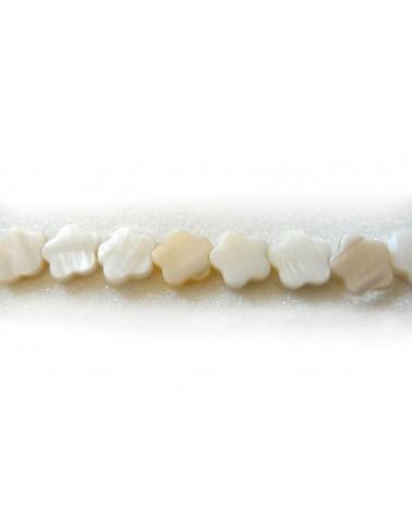 Fleur en nacre 14mm blanc x 3