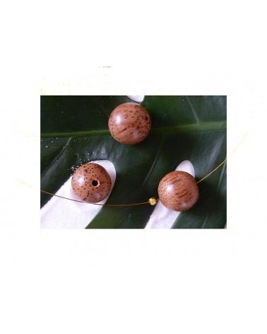 Palmier perle bois exotique marron 20mm X 1
