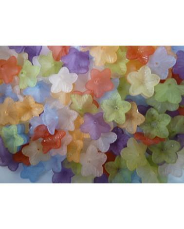 Fleurs givrées 18 x 5.5mm  mélangées x 20