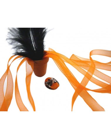 Ruban organza 10mm orange X 3 M