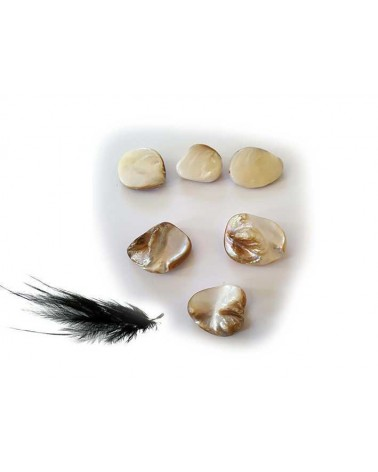 Pépite coquillage16-22mm nacré blanc X 1