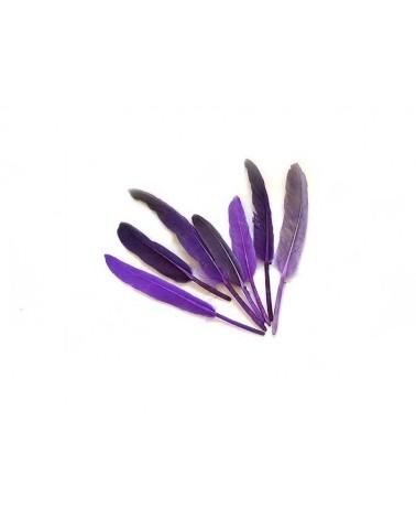 Plume d'oie 100-150mm Violet X3