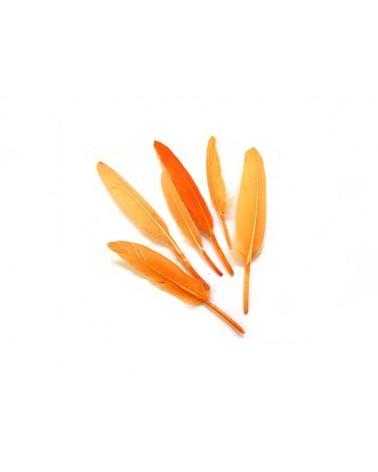 Plume d'oie 100-150mm Orange X3