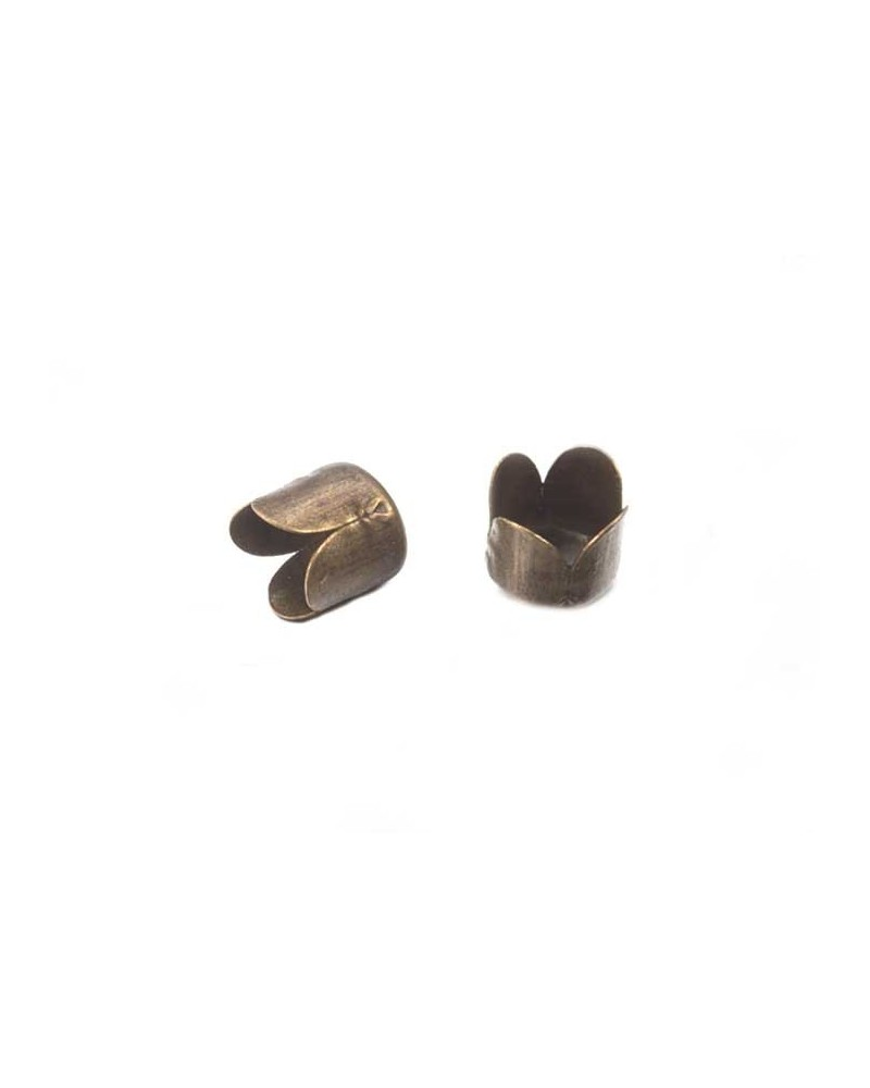 Coquille 6,5 x 7mm bronze