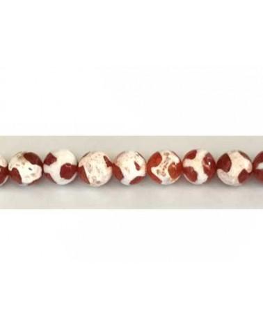 Agate Tibétaine facettée 8,5mm rouge blanc X 10
