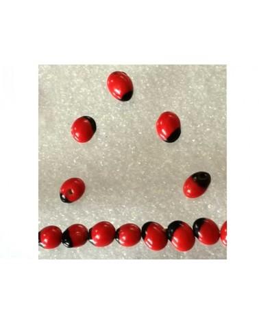 Graine Açaï 6mm rouge noir X1
