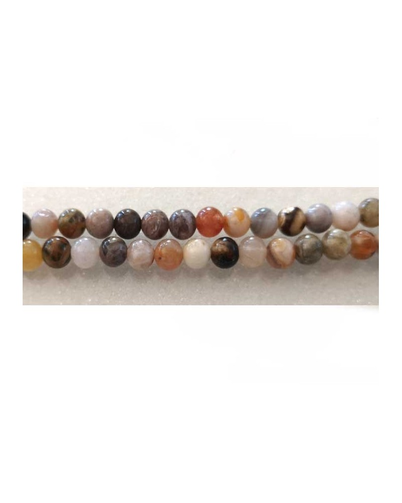 Agate Bambou fossile 6mm x10
